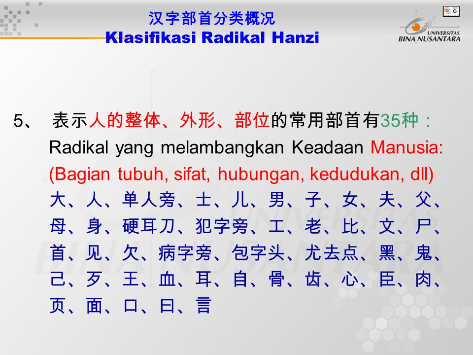 5 、 表示人的整体、外形、部位的常用部首有 35 种: Radikal yang melambangkan Keadaan Manusia: (Bagian tubuh, sifat, hubungan, kedudukan, dll) 大、人、单人旁、士、儿、男、子、女、夫、父、 母、身、硬耳刀