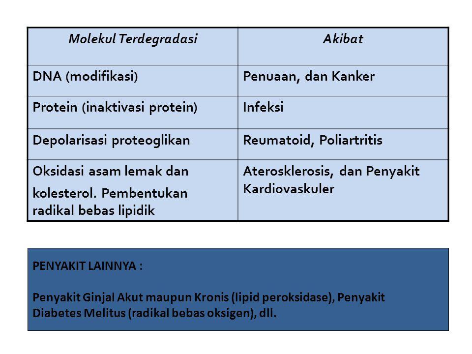 Molekul TerdegradasiAkibat DNA (modifikasi)Penuaan, dan Kanker Protein (inaktivasi protein)Infeksi Depolarisasi proteoglikanReumatoid, Poliartritis Oksidasi asam lemak dan kolesterol.