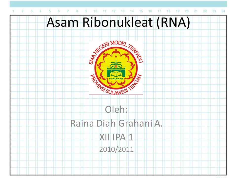 Asam Ribonukleat (RNA) Oleh: Raina Diah Grahani A. XII IPA 1 2010/2011