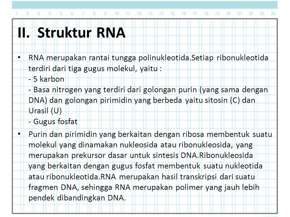 II. Struktur RNA RNA merupakan rantai tungga polinukleotida.Setiap ribonukleotida terdiri dari tiga gugus molekul, yaitu : - 5 karbon - Basa nitrogen