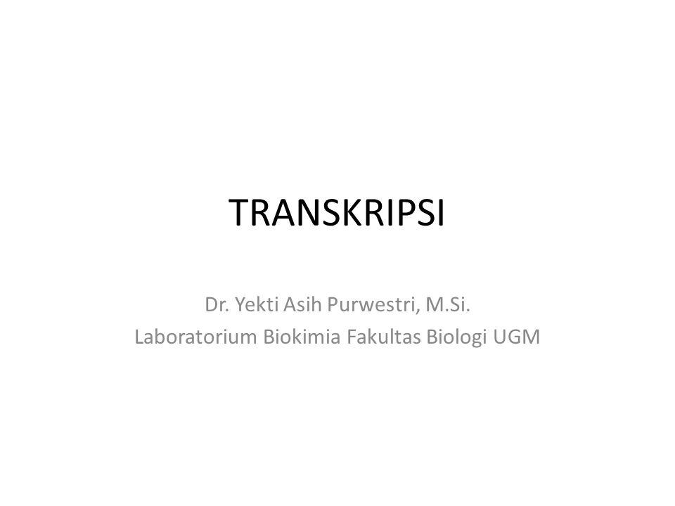 TRANSKRIPSI Dr. Yekti Asih Purwestri, M.Si. Laboratorium Biokimia Fakultas Biologi UGM