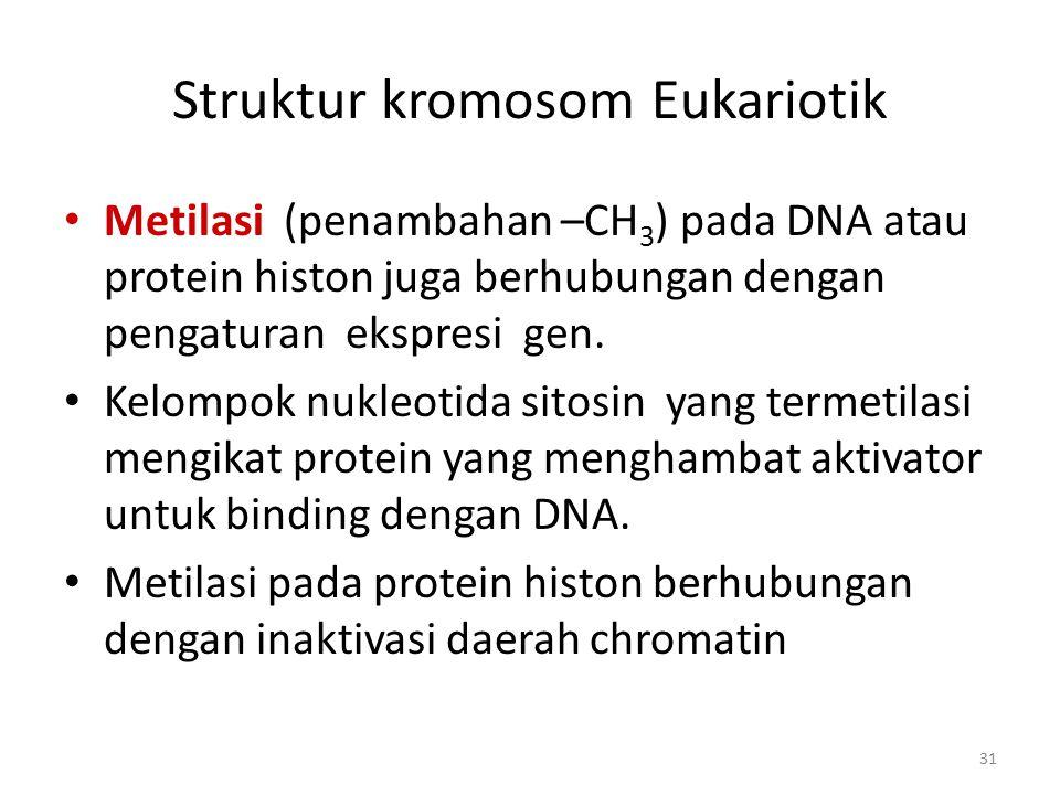 31 Struktur kromosom Eukariotik Metilasi (penambahan –CH 3 ) pada DNA atau protein histon juga berhubungan dengan pengaturan ekspresi gen. Kelompok nu