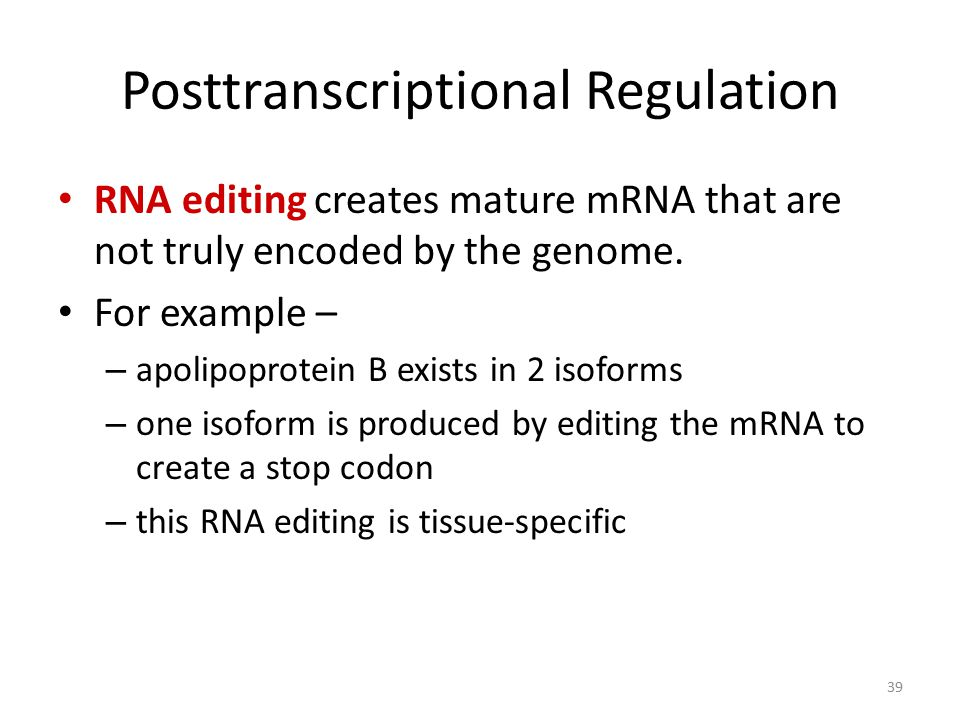 39 Posttranscriptional Regulation RNA editing creates mature mRNA that are not truly encoded by the genome. For example – – apolipoprotein B exists in