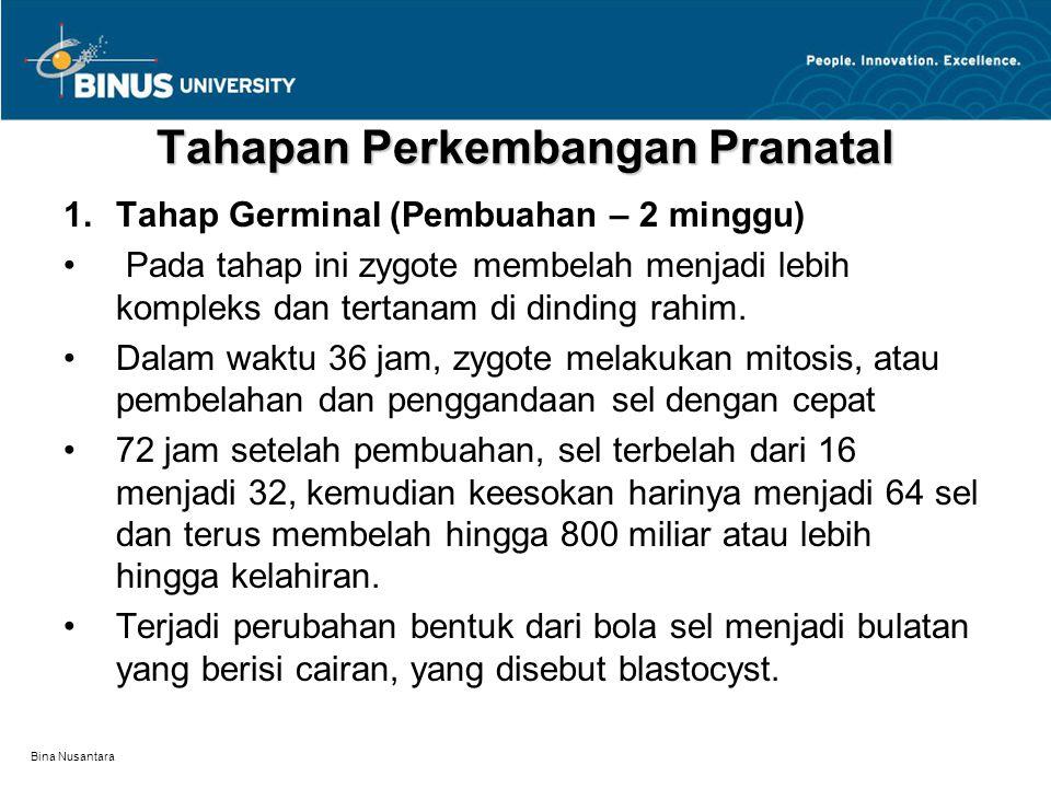 Bina Nusantara Tahapan Perkembangan Pranatal 1.Tahap Germinal (Pembuahan – 2 minggu) Pada tahap ini zygote membelah menjadi lebih kompleks dan tertana