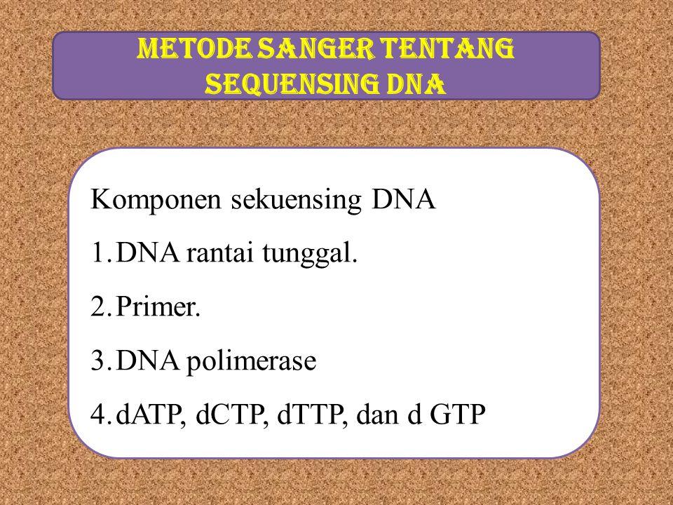 METODE SANGER TENTANG SEqUENSING DNA Komponen sekuensing DNA 1.DNA rantai tunggal. 2.Primer. 3.DNA polimerase 4.dATP, dCTP, dTTP, dan d GTP