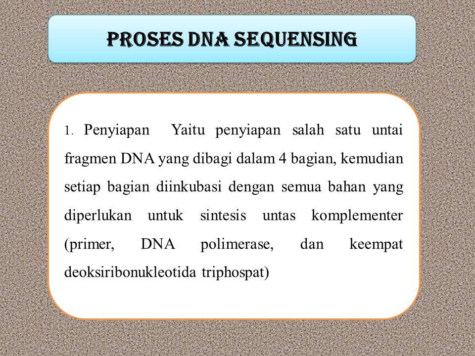 Proses DNA sequensing 1. Penyiapan Yaitu penyiapan salah satu untai fragmen DNA yang dibagi dalam 4 bagian, kemudian setiap bagian diinkubasi dengan s