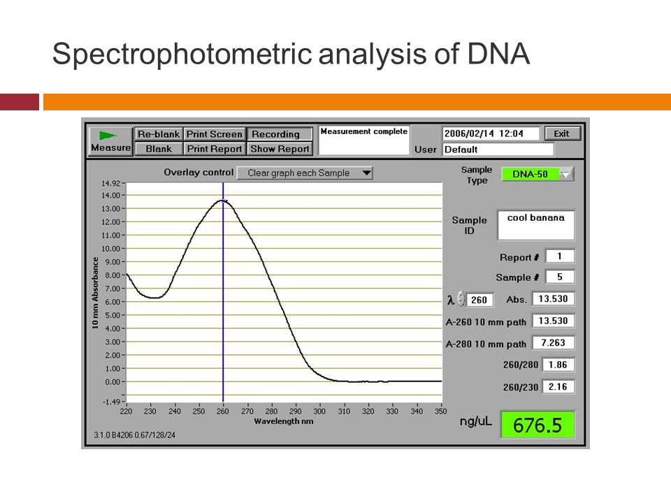 Spectrophotometric analysis of DNA