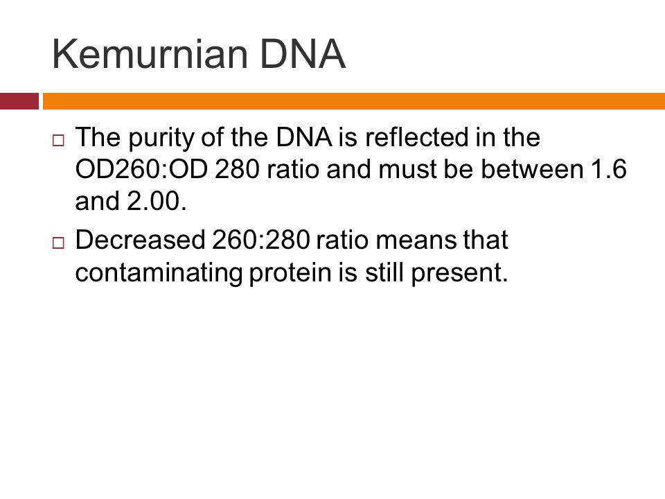 Kemurnian DNA  The purity of the DNA is reflected in the OD260:OD 280 ratio and must be between 1.6 and 2.00.  Decreased 260:280 ratio means that co