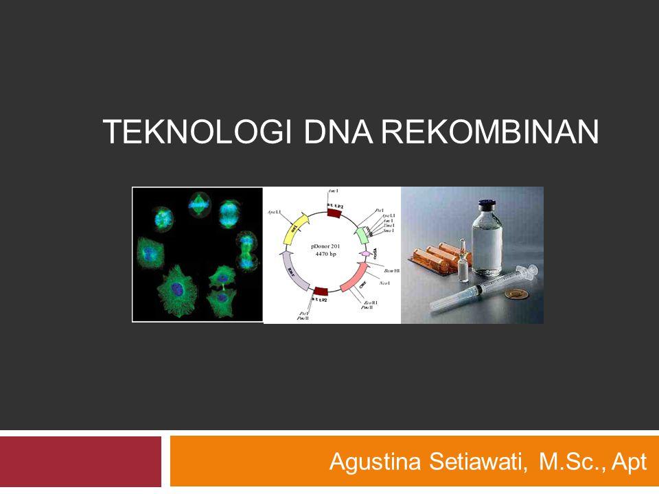 TEKNOLOGI DNA REKOMBINAN Agustina Setiawati, M.Sc., Apt