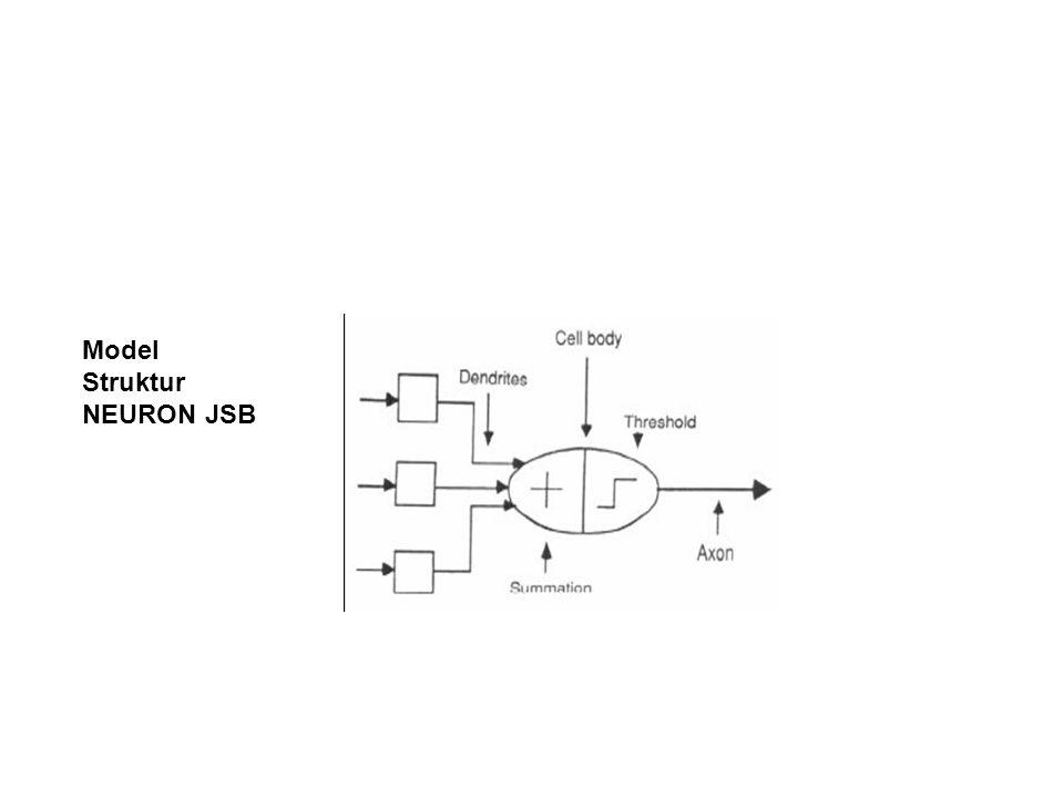 Model Struktur NEURON JSB