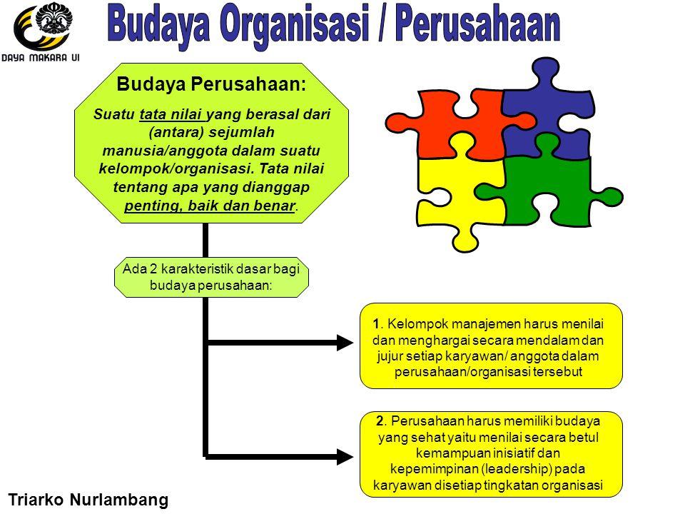 Budaya Perusahaan: Suatu tata nilai yang berasal dari (antara) sejumlah manusia/anggota dalam suatu kelompok/organisasi. Tata nilai tentang apa yang d