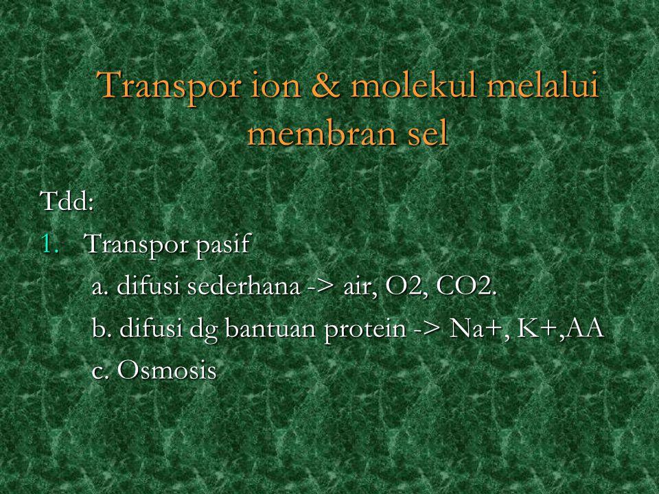 Tdd: 1.Transpor pasif a. difusi sederhana -> air, O2, CO2.