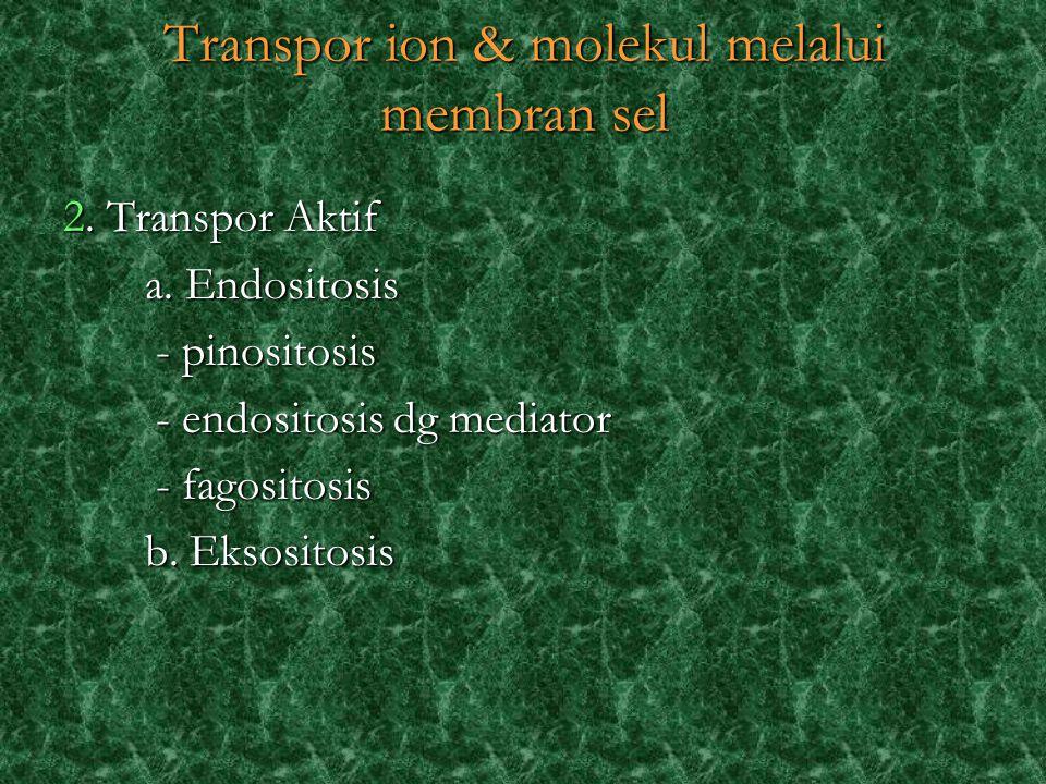 2. Transpor Aktif a. Endositosis a. Endositosis - pinositosis - pinositosis - endositosis dg mediator - endositosis dg mediator - fagositosis - fagosi