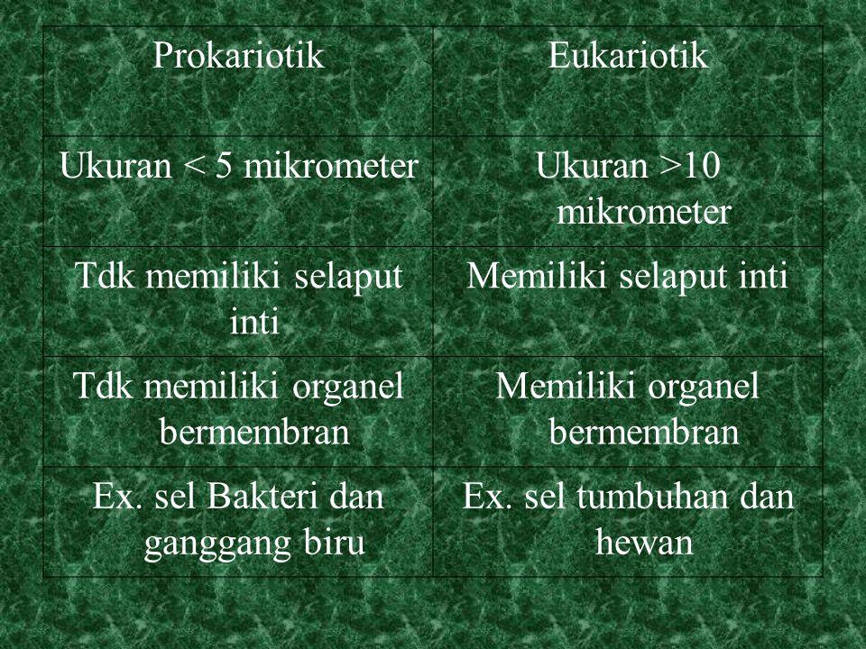 ProkariotikEukariotik Ukuran < 5 mikrometerUkuran >10 mikrometer Tdk memiliki selaput inti Memiliki selaput inti Tdk memiliki organel bermembran Memiliki organel bermembran Ex.