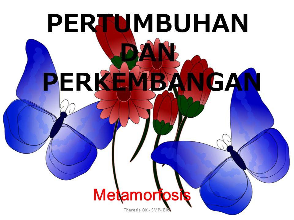 Metagenesis Pertumbuhan Perkembangan Tumbuhan Hewan Metamorfosis Theresia OK - SMP- BIO