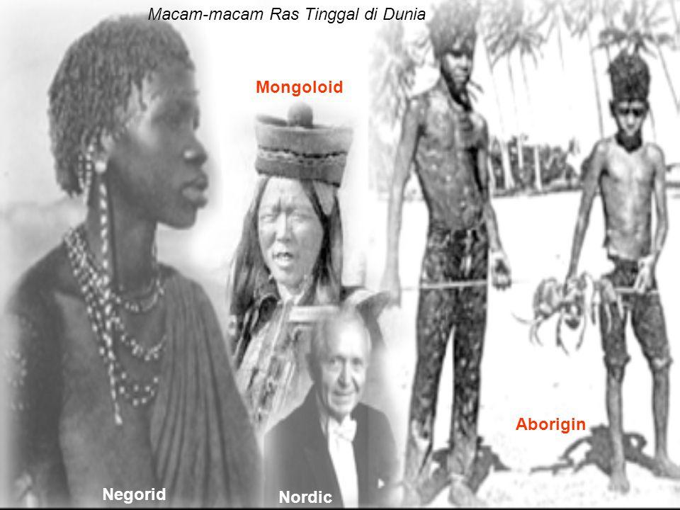Macam-macam Ras Tinggal di Dunia Negorid Mongoloid Nordic Aborigin