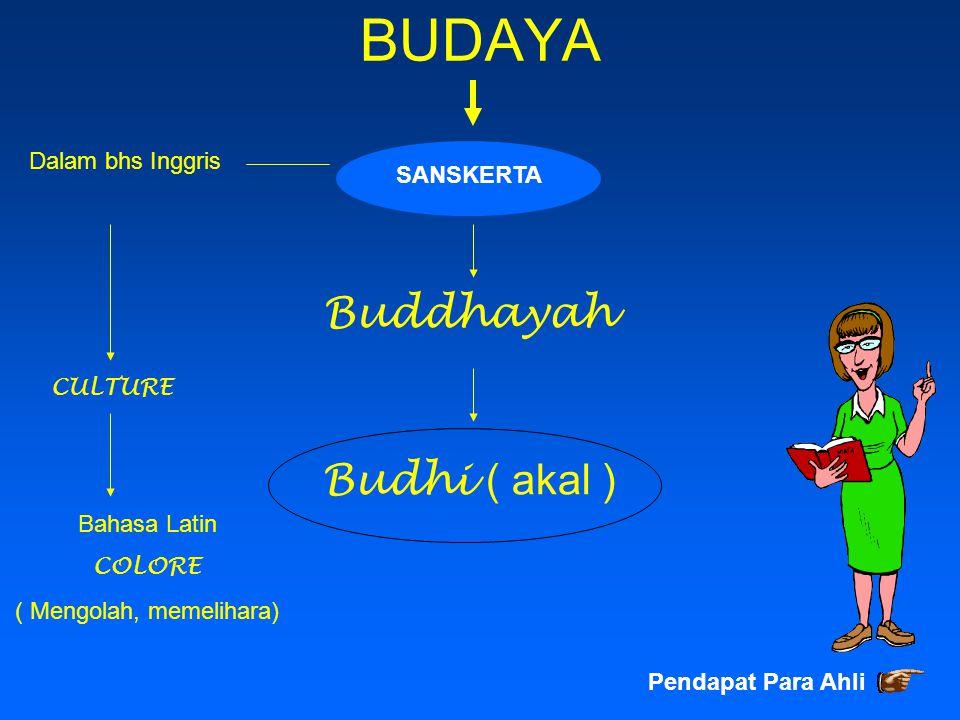 BUDAYA SANSKERTA Buddhayah Budhi ( akal ) Dalam bhs Inggris CULTURE Bahasa Latin COLORE ( Mengolah, memelihara) Pendapat Para Ahli