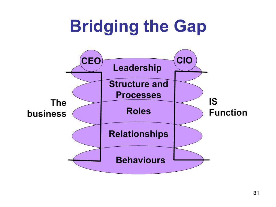 81 Bridging the Gap