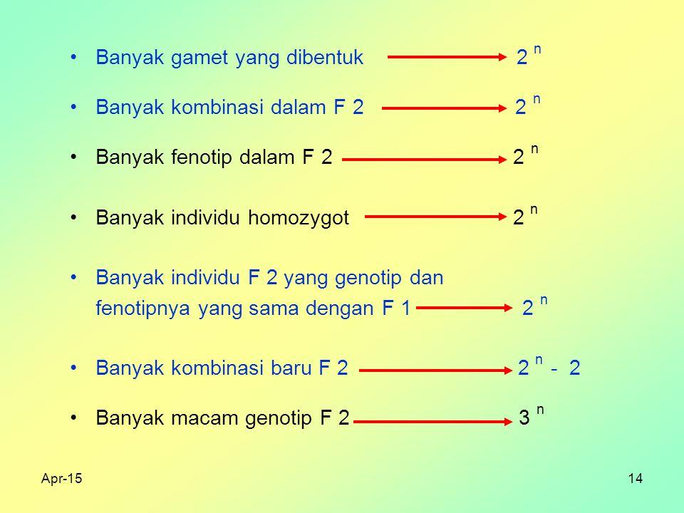 Apr-1514 Banyak gamet yang dibentuk 2 n Banyak kombinasi dalam F 2 2 n Banyak fenotip dalam F 2 2 n Banyak individu homozygot 2 n Banyak individu F 2 yang genotip dan fenotipnya yang sama dengan F 1 2 n Banyak kombinasi baru F 2 2 n - 2 Banyak macam genotip F 2 3 n