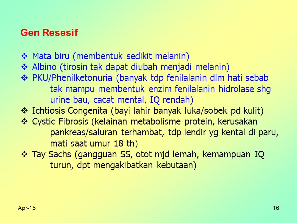 Apr-1516 Gen Resesif  Mata biru (membentuk sedikit melanin)  Albino (tirosin tak dapat diubah menjadi melanin)  PKU/Phenilketonuria (banyak tdp fenilalanin dlm hati sebab tak mampu membentuk enzim fenilalanin hidrolase shg urine bau, cacat mental, IQ rendah)  Ichtiosis Congenita (bayi lahir banyak luka/sobek pd kulit)  Cystic Fibrosis (kelainan metabolisme protein, kerusakan pankreas/saluran terhambat, tdp lendir yg kental di paru, mati saat umur 18 th)  Tay Sachs (gangguan SS, otot mjd lemah, kemampuan IQ turun, dpt mengakibatkan kebutaan)