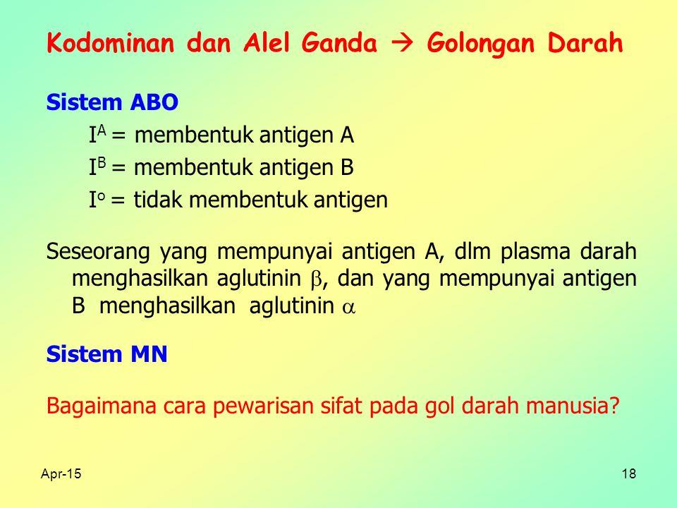 Apr-1518 Kodominan dan Alel Ganda  Golongan Darah Sistem ABO I A = membentuk antigen A I B = membentuk antigen B I o = tidak membentuk antigen Seseorang yang mempunyai antigen A, dlm plasma darah menghasilkan aglutinin , dan yang mempunyai antigen B menghasilkan aglutinin  Sistem MN Bagaimana cara pewarisan sifat pada gol darah manusia?