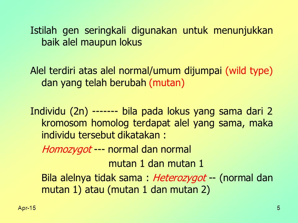 Apr-155 Istilah gen seringkali digunakan untuk menunjukkan baik alel maupun lokus Alel terdiri atas alel normal/umum dijumpai (wild type) dan yang telah berubah (mutan) Individu (2n) ------- bila pada lokus yang sama dari 2 kromosom homolog terdapat alel yang sama, maka individu tersebut dikatakan : Homozygot --- normal dan normal mutan 1 dan mutan 1 Bila alelnya tidak sama : Heterozygot -- (normal dan mutan 1) atau (mutan 1 dan mutan 2)