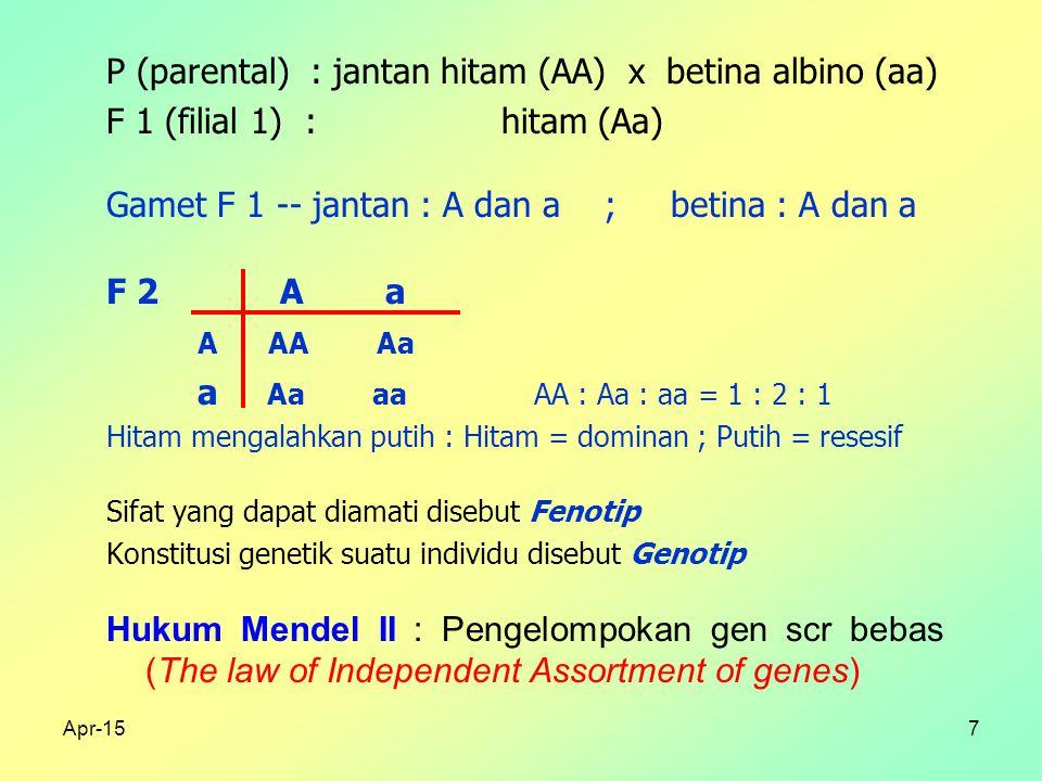 Apr-157 P (parental) : jantan hitam (AA) x betina albino (aa) F 1 (filial 1) : hitam (Aa) Gamet F 1 -- jantan : A dan a ; betina : A dan a F 2 A a A AA Aa a Aa aa AA : Aa : aa = 1 : 2 : 1 Hitam mengalahkan putih : Hitam = dominan ; Putih = resesif Sifat yang dapat diamati disebut Fenotip Konstitusi genetik suatu individu disebut Genotip Hukum Mendel II : Pengelompokan gen scr bebas (The law of Independent Assortment of genes)