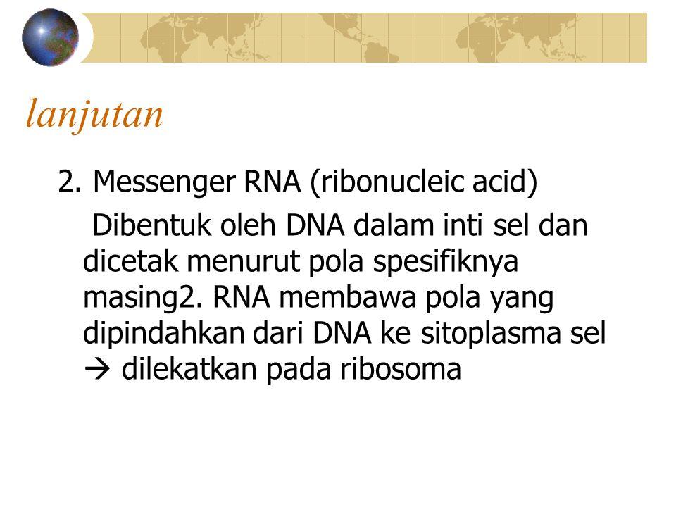 lanjutan 2. Messenger RNA (ribonucleic acid) Dibentuk oleh DNA dalam inti sel dan dicetak menurut pola spesifiknya masing2. RNA membawa pola yang dipi