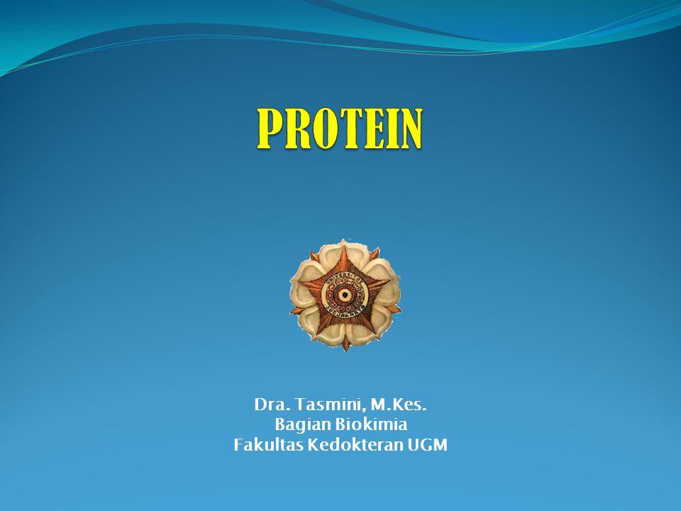 PENDAHULUAN Protein : - merupakan penyusun utama sel - dg elemen C, H, O, N (+ S, P, Fe, dll) - merupakan polimer asam amino (AA) ada 20 macam AA proteinogenik (di alam ada kira-kira 300 AA) Struktur 3-dimensi dan sifat biologik ditentukan oleh : 1.