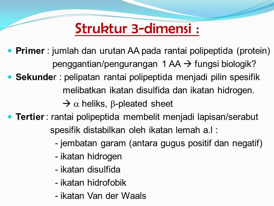 Struktur 3-dimensi : Primer : jumlah dan urutan AA pada rantai polipeptida (protein) penggantian/pengurangan 1 AA  fungsi biologik.