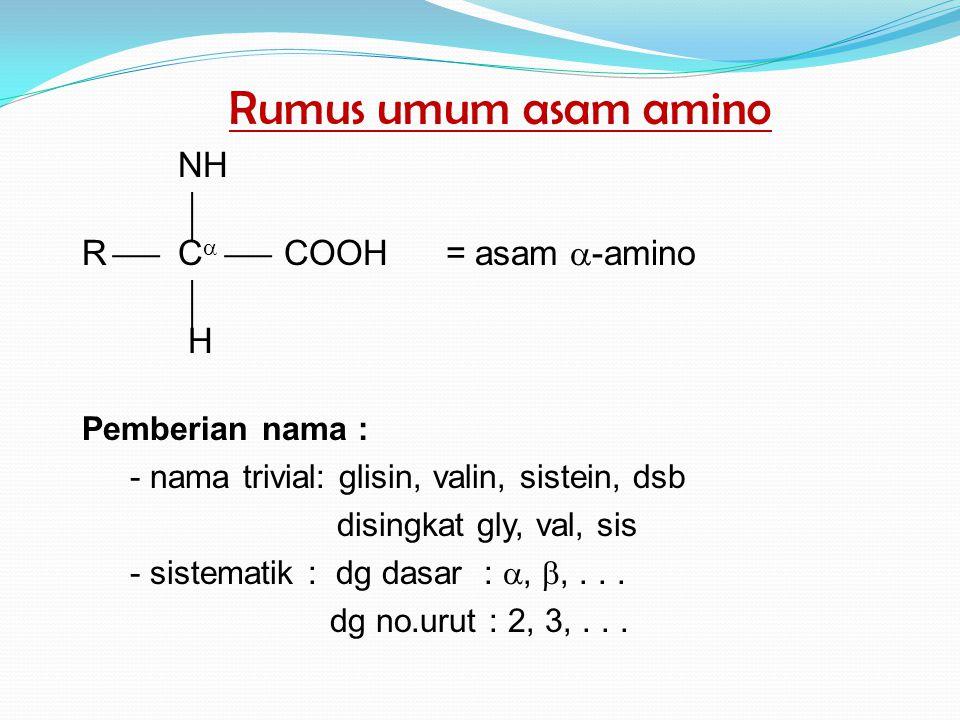 Rumus umum asam amino NH RC  COOH = asam  -amino H Pemberian nama : - nama trivial: glisin, valin, sistein, dsb disingkat gly, val, sis - sistematik