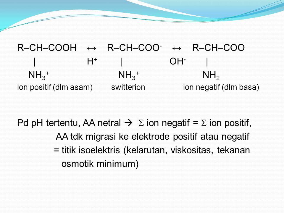 R–CH–COOH ↔ R–CH–COO - ↔ R–CH–COO | H + | OH - | NH 3 + NH 3 + NH 2 ion positif (dlm asam) switterion ion negatif (dlm basa) Pd pH tertentu, AA netral   ion negatif =  ion positif, AA tdk migrasi ke elektrode positif atau negatif = titik isoelektris (kelarutan, viskositas, tekanan osmotik minimum)