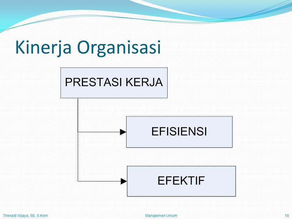 Trisnadi Wijaya, SE, S.Kom Manajemen Umum18 Kinerja Organisasi
