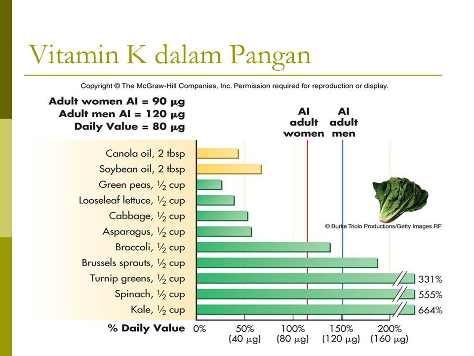Vitamin K dalam Pangan