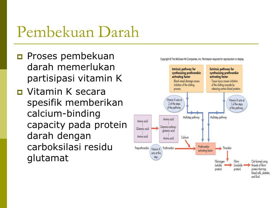 Pembekuan Darah  Proses pembekuan darah memerlukan partisipasi vitamin K  Vitamin K secara spesifik memberikan calcium-binding capacity pada protein