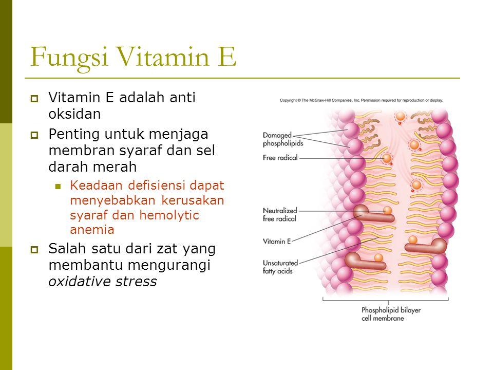 Fungsi Vitamin E  Vitamin E adalah anti oksidan  Penting untuk menjaga membran syaraf dan sel darah merah Keadaan defisiensi dapat menyebabkan kerus
