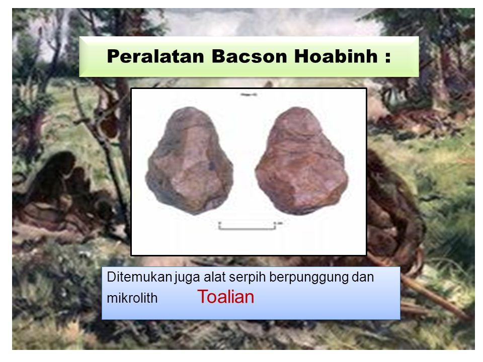 Peralatan Bacson Hoabinh : Ditemukan juga alat serpih berpunggung dan mikrolith Toalian
