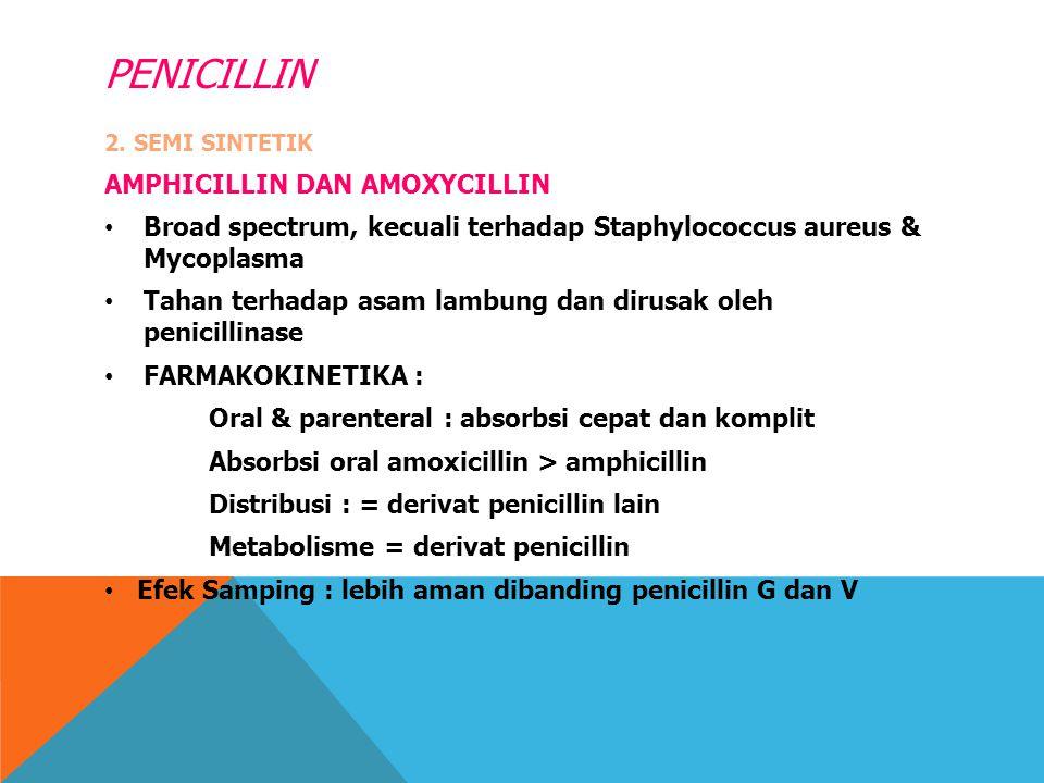 PENICILLIN 2. SEMI SINTETIK AMPHICILLIN DAN AMOXYCILLIN Broad spectrum, kecuali terhadap Staphylococcus aureus & Mycoplasma Tahan terhadap asam lambun
