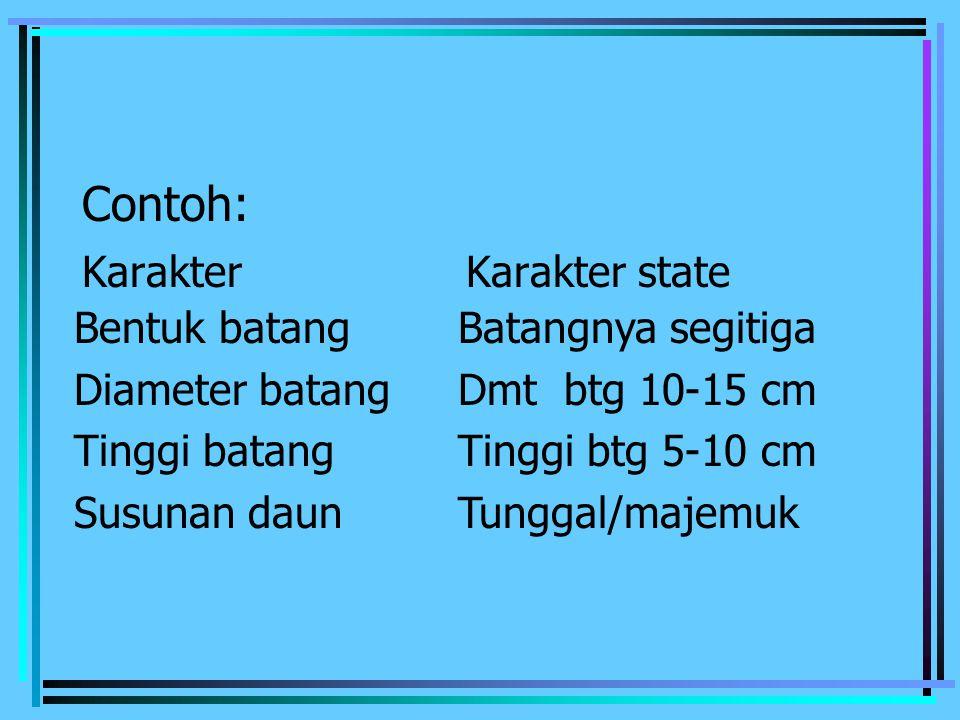 Contoh: KarakterKarakter state Bentuk batangBatangnya segitiga Diameter batangDmt btg 10-15 cm Tinggi batangTinggi btg 5-10 cm Susunan daunTunggal/maj
