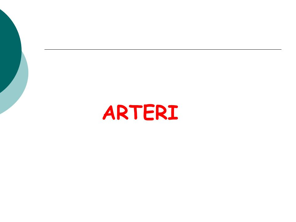 ARTERI