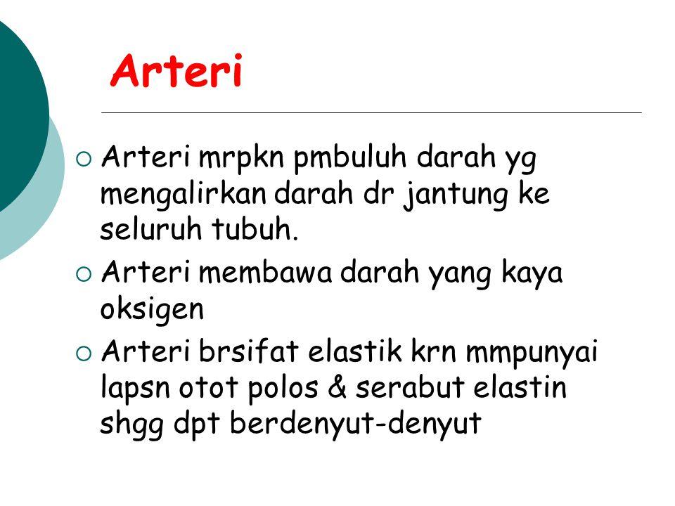 Arteri AArteri mrpkn pmbuluh darah yg mengalirkan darah dr jantung ke seluruh tubuh. AArteri membawa darah yang kaya oksigen AArteri brsifat ela
