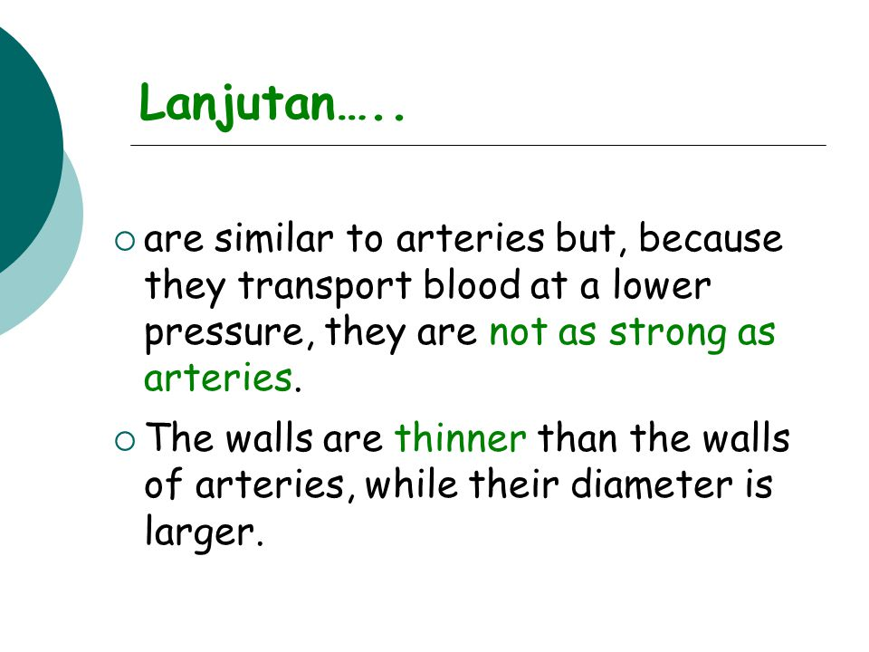 Lanjutan…..  are similar to arteries but, because they transport blood at a lower pressure, they are not as strong as arteries.  The walls are thinn