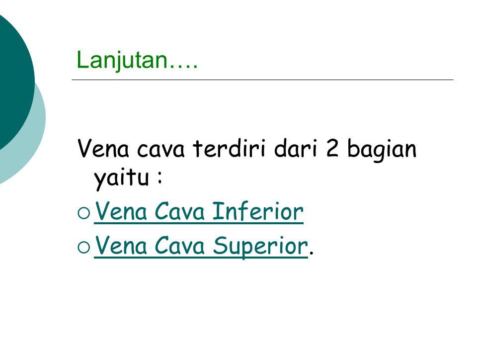 Lanjutan…. Vena cava terdiri dari 2 bagian yaitu :  Vena Cava Inferior Vena Cava Inferior  Vena Cava Superior. Vena Cava Superior