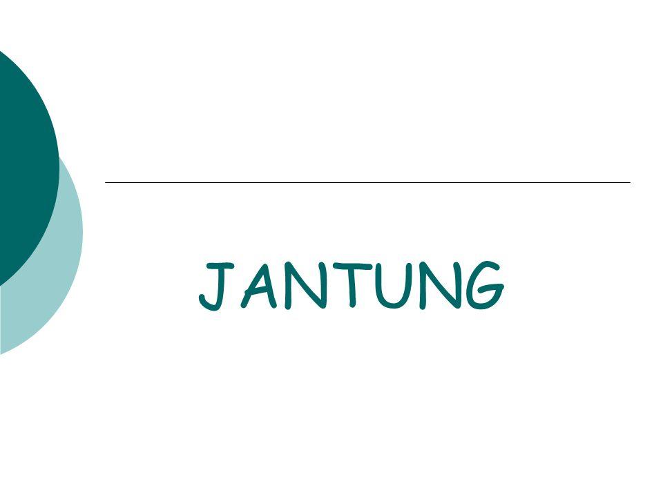 JANTUNG