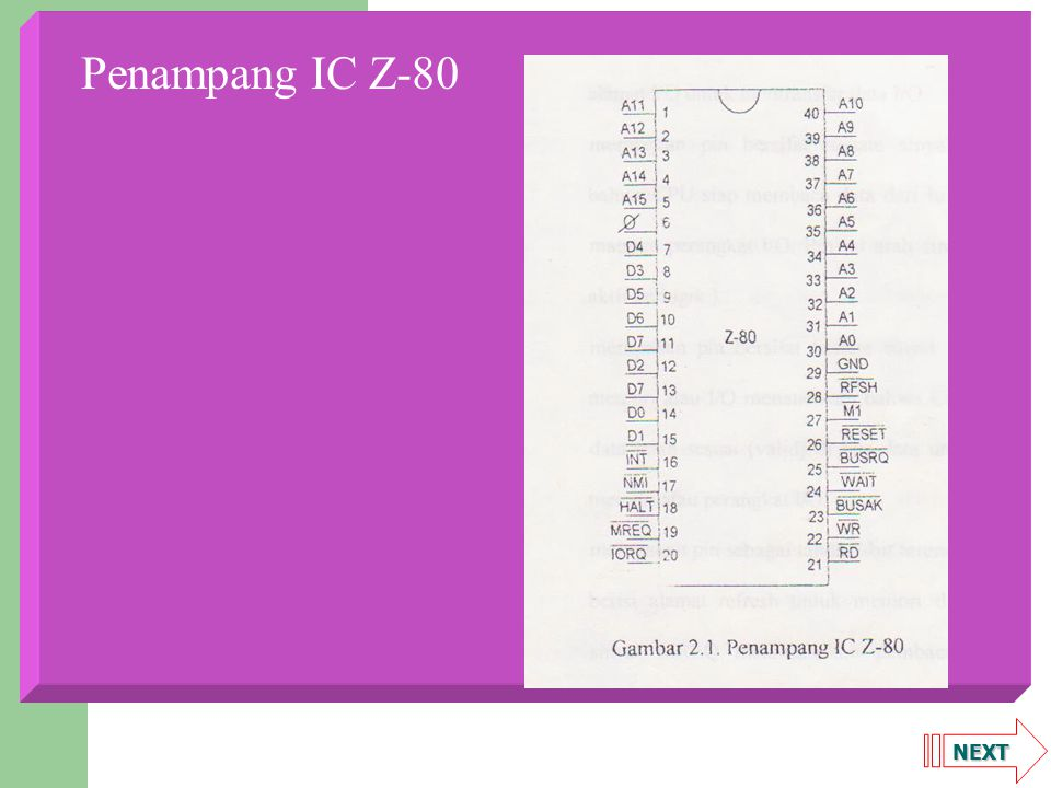 NEXT Penampang IC Z-80