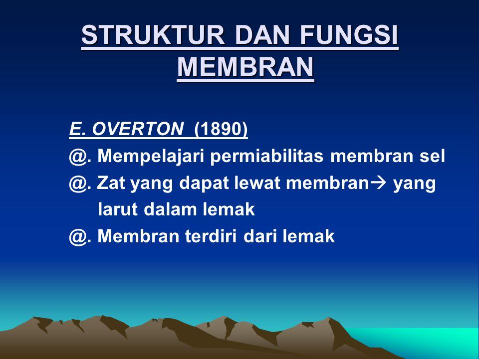 STRUKTUR DAN FUNGSI MEMBRAN E. OVERTON (1890) @. Mempelajari permiabilitas membran sel @. Zat yang dapat lewat membran  yang larut dalam lemak @. Mem