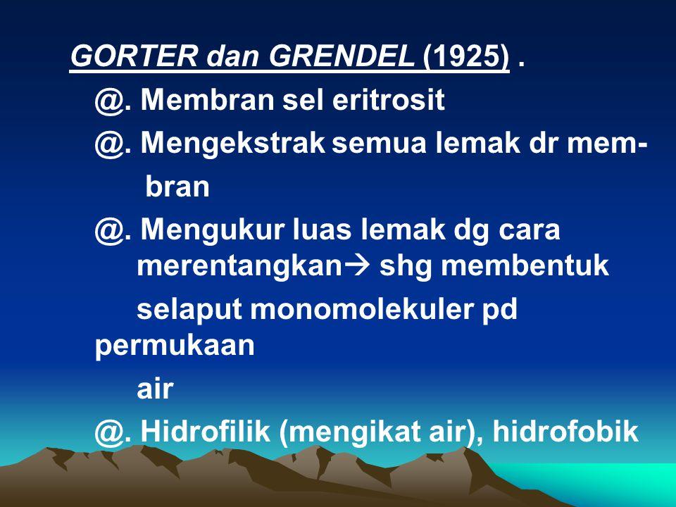 GORTER dan GRENDEL (1925). @. Membran sel eritrosit @. Mengekstrak semua lemak dr mem- bran @. Mengukur luas lemak dg cara merentangkan  shg membentu
