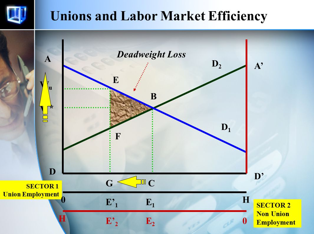 27 Unions and Labor Market Efficiency SECTOR 2 Non Union Employment SECTOR 1 Union Employment 0H 0 H D1D1 D2D2 W* C E1E1 E2E2 WuWu A B D A' D' G E' 1 E' 2 E Deadweight Loss F