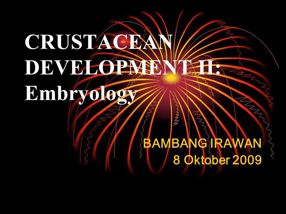CRUSTACEAN DEVELOPMENT II: Embryology BAMBANG IRAWAN 8 Oktober 2009