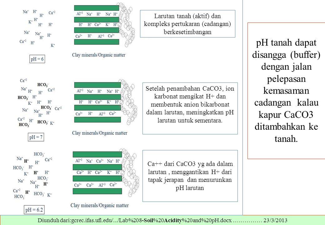 Diunduh dari:gcrec.ifas.ufl.edu/.../Lab%208-Soil%20Acidity%20and%20pH.docx …………… 23/3/2013 pH tanah dapat disangga (buffer) dengan jalan pelepasan kem